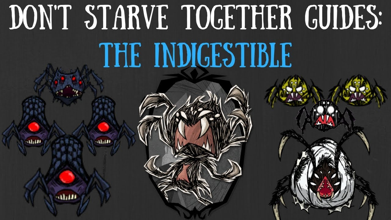 don t starve together boss guide