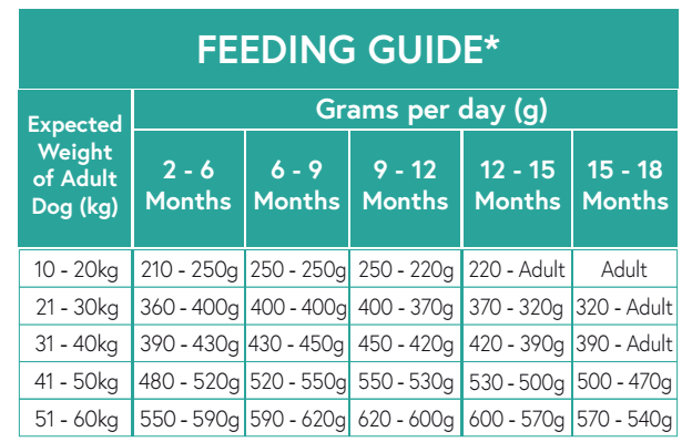 large breed puppy feeding guide