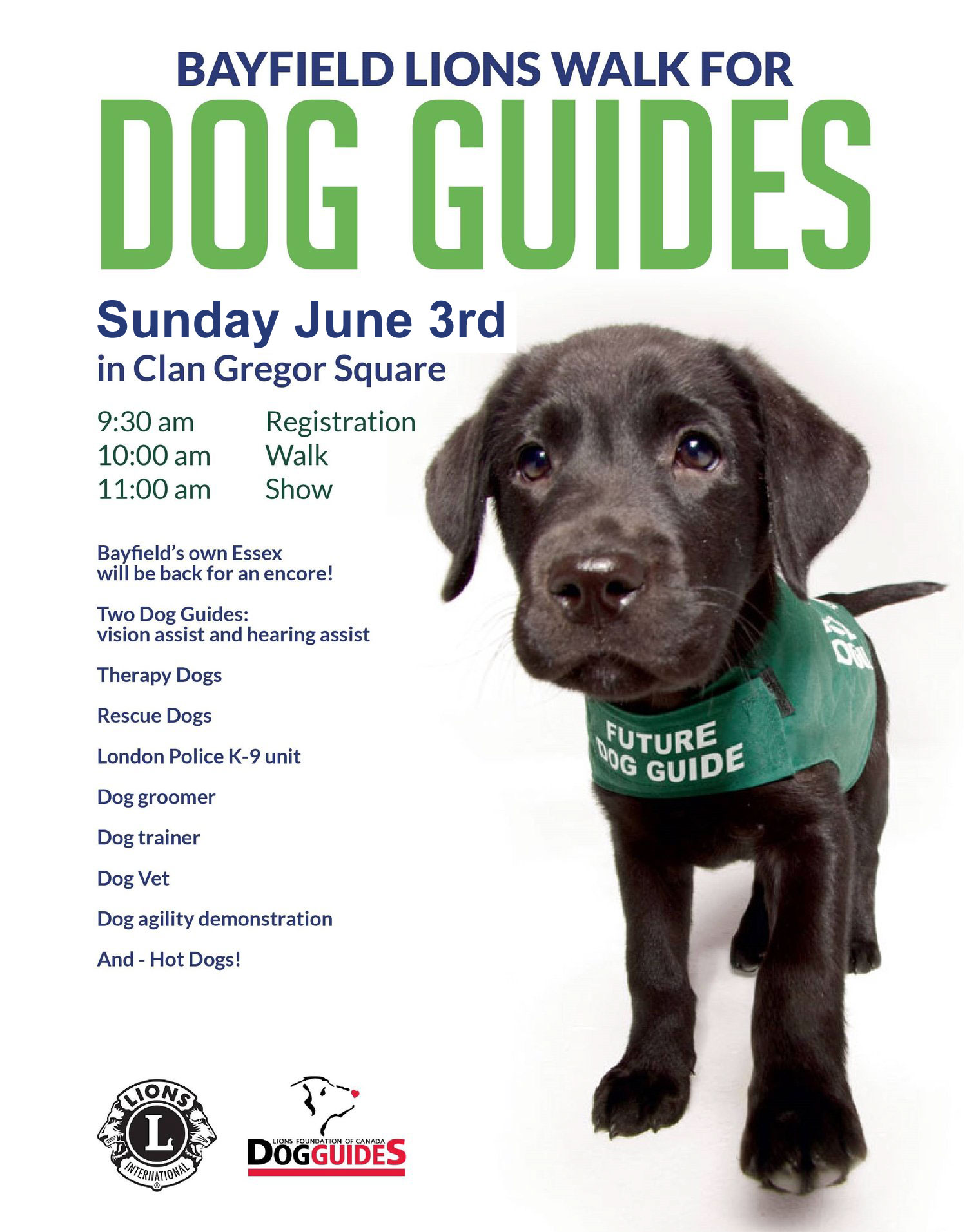 lions walk for dog guides