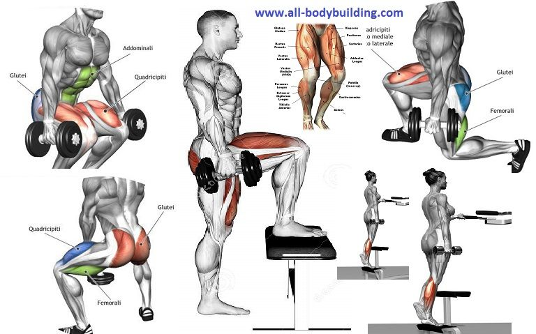 gym workout guide for men