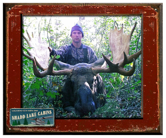 how much does a guided moose hunt cost